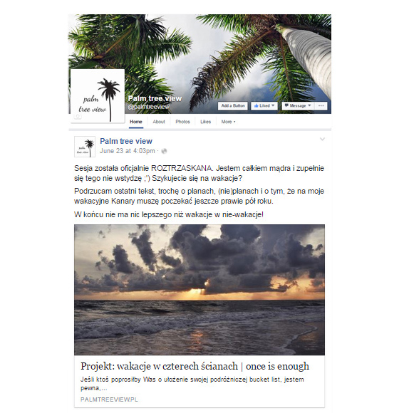 Fanpage | palm tree view