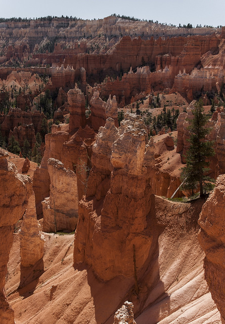 hoodoo w Queen Garden Trail 2