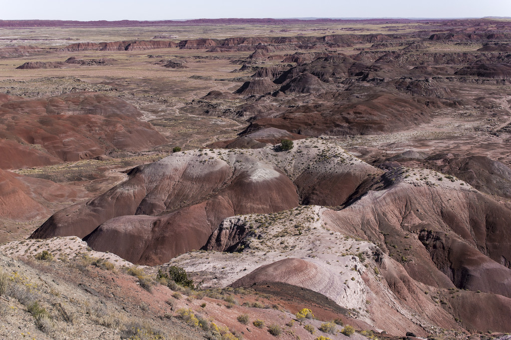 Petrified Forest, Painted Dessert 2
