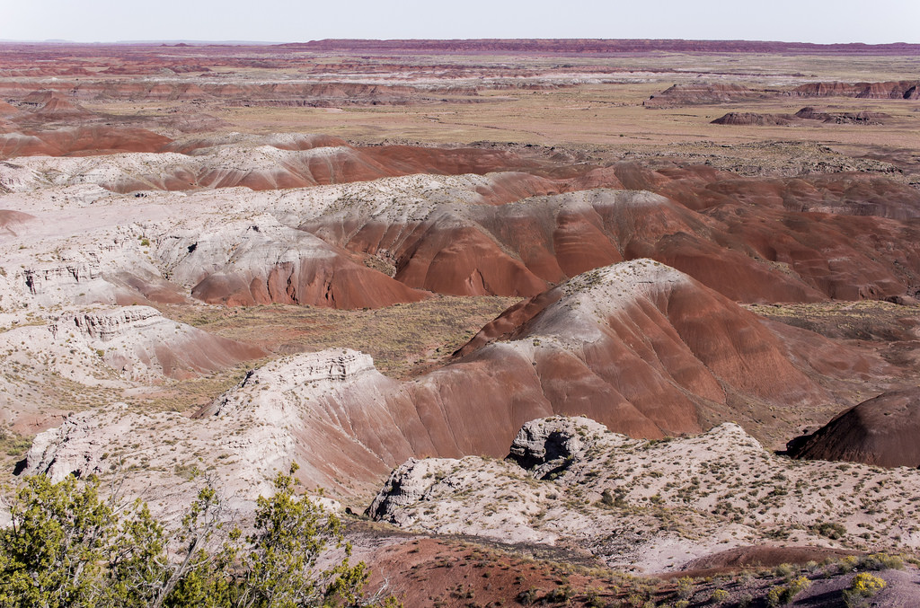 Petrified Forest, Painted Desert