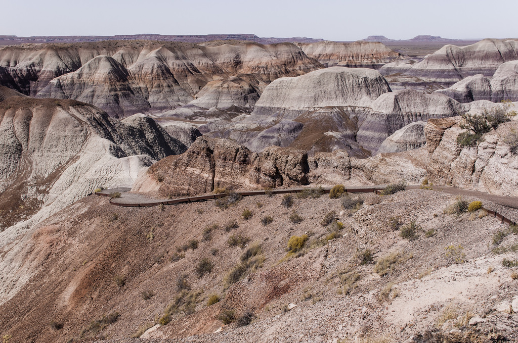 Petrified Forest, Blue Mesa