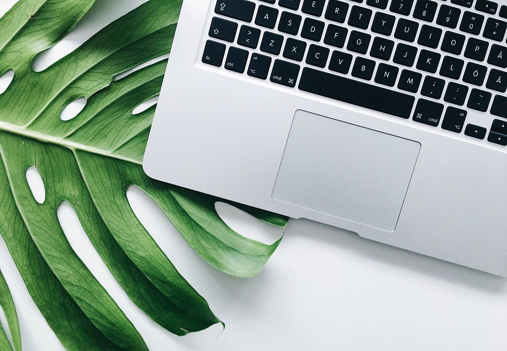 kwiecień | monstera i macbook
